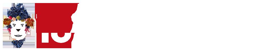 logo-anteprimavini-slider